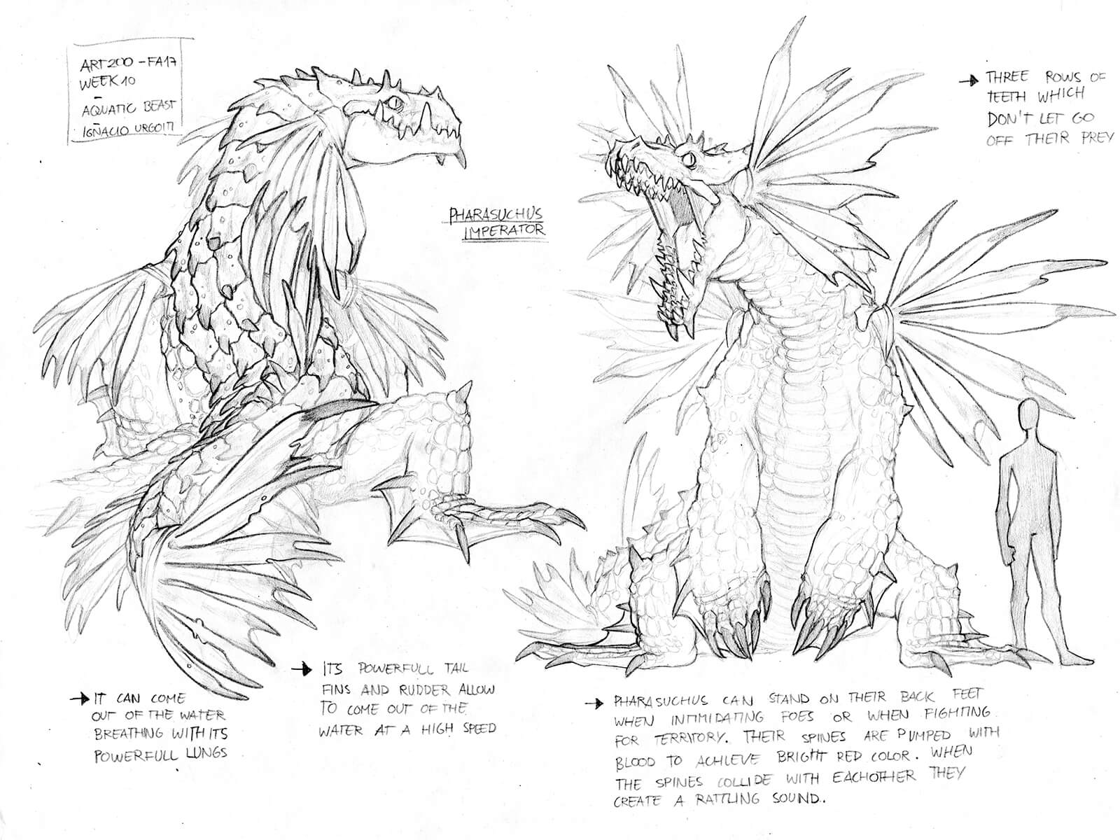 Black-and-white concept sketches of a frilled dragon-like creature in flight, standing, and eating an animal.